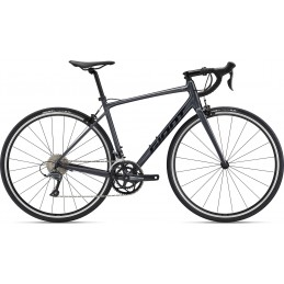 GIANT CONTEND 2 2021